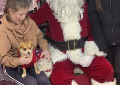 Sera Husky Santa (17)