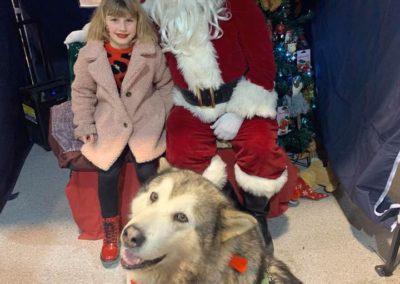 Sera Husky Santa (3)