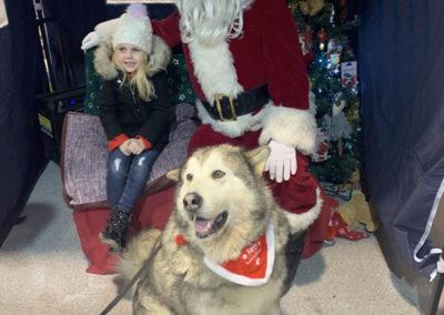 Sera Husky Santa (52)