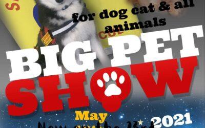 Big Pet Show